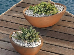 succulents outdoors in delano oval planter bowl