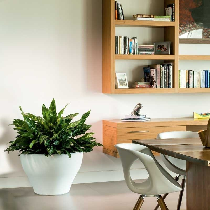 white low bowl planter next to shelves in office area of home