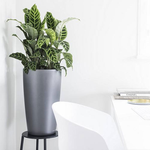 silver round self-watering planter on black stand next to white table and chair