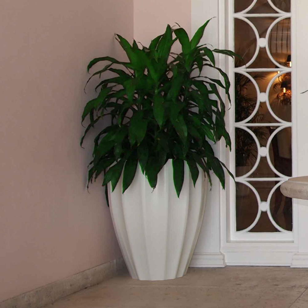 a white round fluted planter in the corner of an entryway next to windows