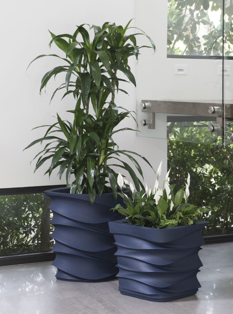 a dark blue wavy fluted diamond shaped planter with tall greenery against a white wall and windows