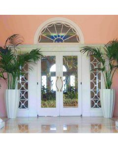 a front entrance with large glass windows and doors accented by two tall fluted planters with palm trees