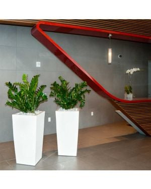 a modern office entryway with a red countertop and wooden base is accented by two white tapered square plant pots with zz plants