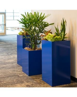 an office hallway with three blue aluminum column planters of varying heights